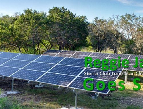 Sierra Club Lone Star Chapter Director Goes Solar