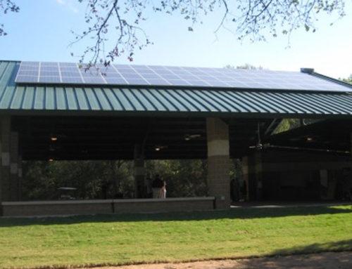 Cameron Park Zoo | Waco, TX