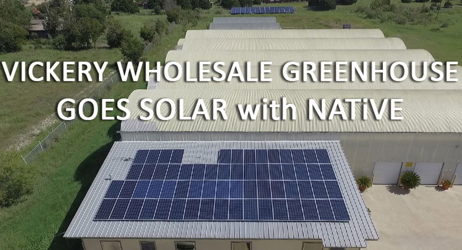 Vickery Wholesale Greenhouse Austin Tx Native Solar