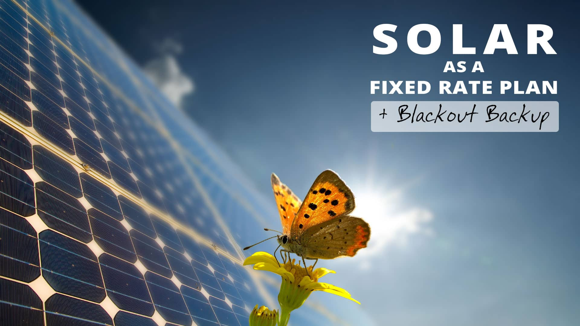 Solar as a Fixed Rate Plan